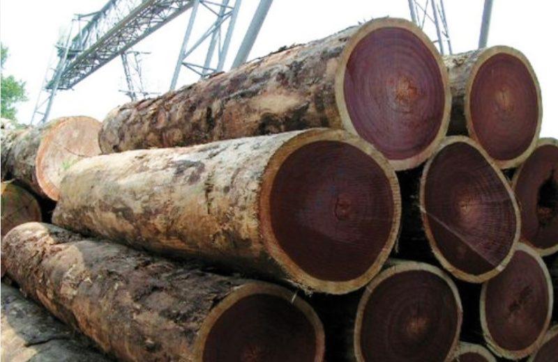 Drewno tropikalne wprzemyśle morskim