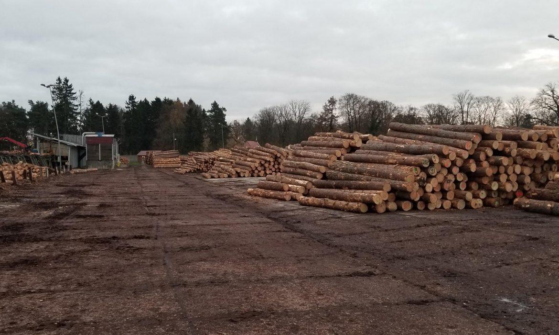 Biomasa Partner Group przejmuje tartak w Chociwlu