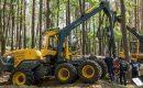 Branża leśna spotyka się w Mostkach