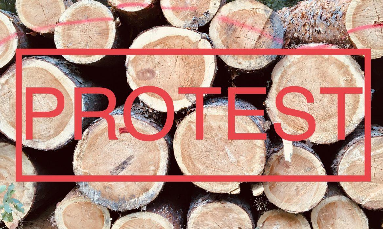 Branża planuje protest w Warszawie